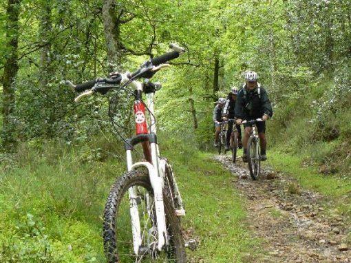Bici de montaña – Ruta Tajahierro